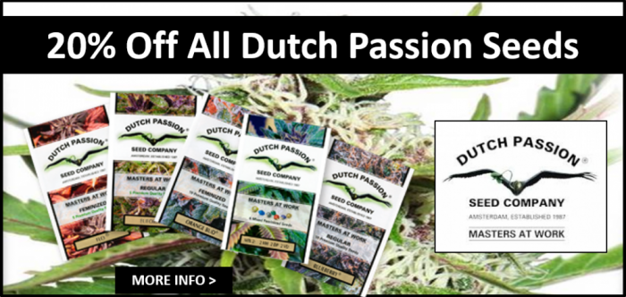 Dutch Passion March 2018 Promo | Discount Cannabis Seeds
