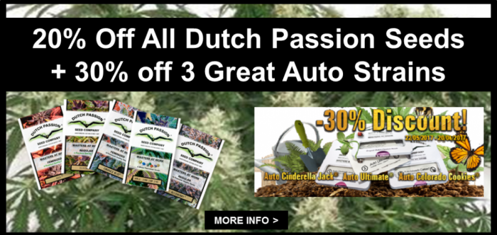 Dutch Passion 20% Off + 30% Off Auto Cannabis Seeds   Discount Cannabis Seeds