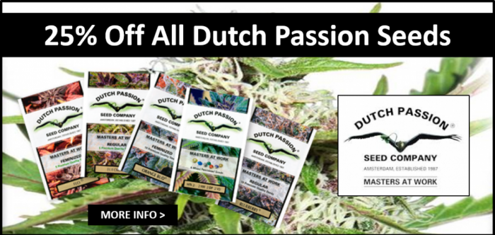 25% Off All Dutch Passion Seeds | Discount Cannabis Seeds