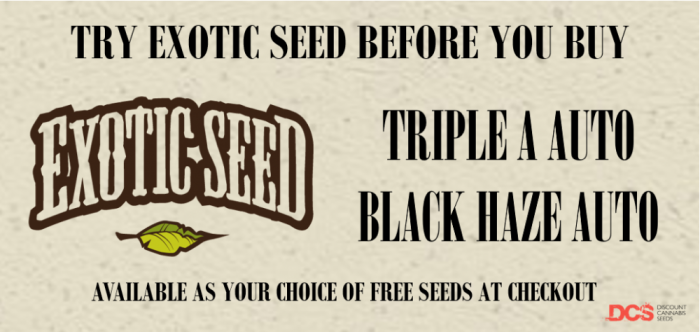 Exotic Seed - Discount Cannabis Seeds