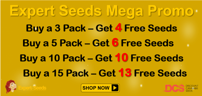 Expert Seeds Promotion - Discount Cannabis Seeds