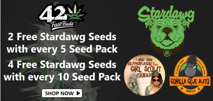 Free Fast Buds Stardawg Seeds - Discount Cannabis Seeds