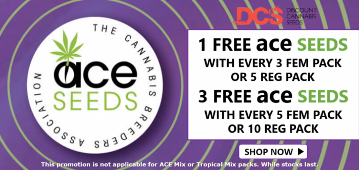Free Ace Seeds - Discount Cannabis Seeds