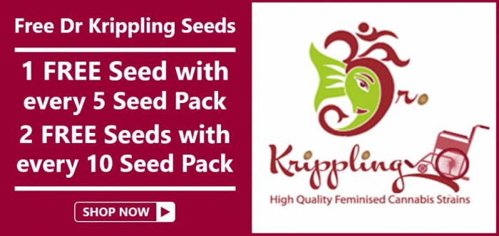 Free Dr Krippling Seeds - Discount Cannabis Seeds