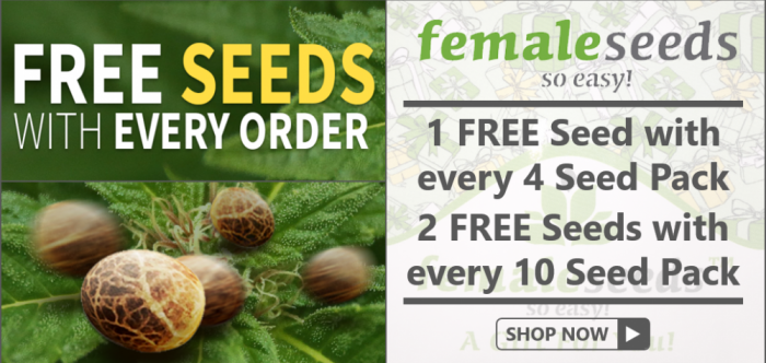 Free Female Seeds - Discount Cannabis Seeds