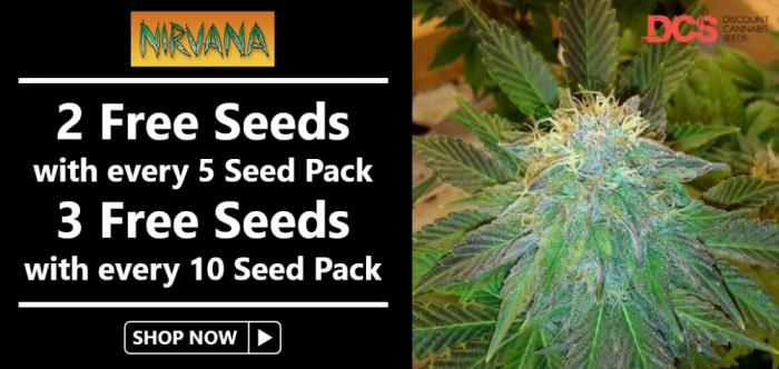 Free Nirvana Seeds - Discount Cannabis Seeds