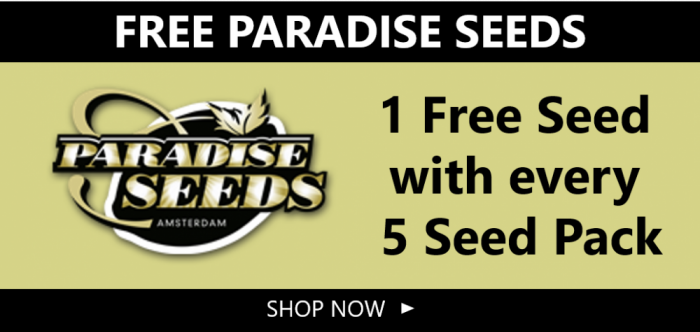 Free Paradise Seeds - Discount Cannabis Seeds