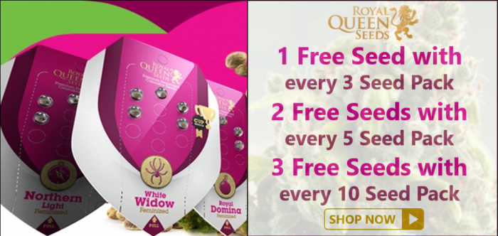 Free Royal Queen Seeds - Discount Cannabis Seeds