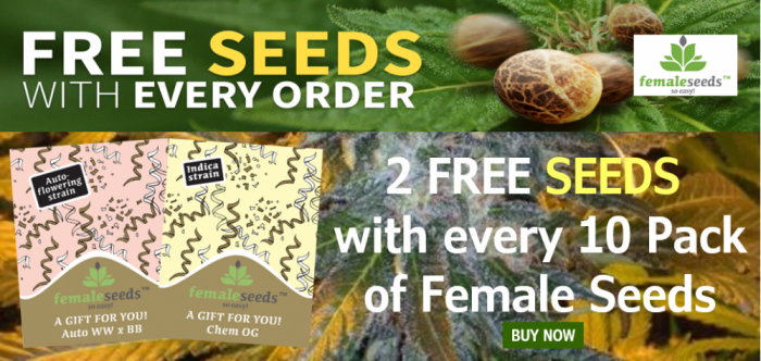 Free Female Seeds | Discount Cannabis Seeds
