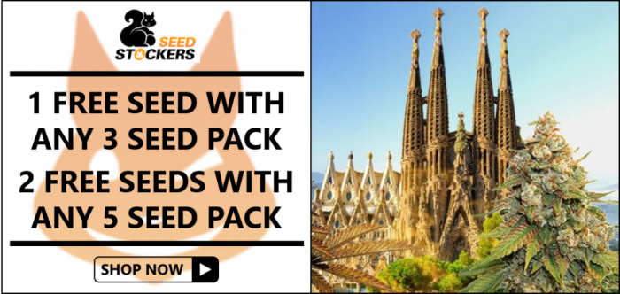 Seed Stockers Free Seeds from Discount Cannabis Seeds