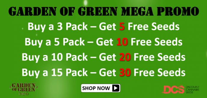 Garden of Green - Discount Cannabis Seeds