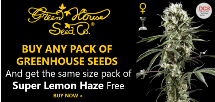 Green House Seeds Promotion | Discount Cannabis Seeds