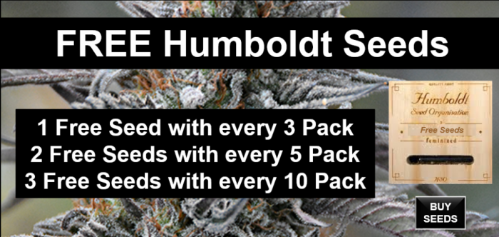 Free Humboldt Seeds | Discount Cannabis Seeds