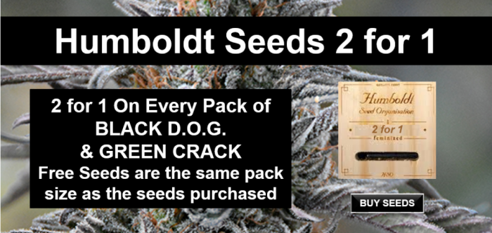 Humboldt Seeds 2 for 1 Promotion | Discount Cannabis Seeds