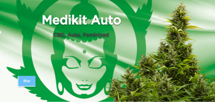 Medikit Auto Feminised Cannabis Seeds | Buddha Seeds