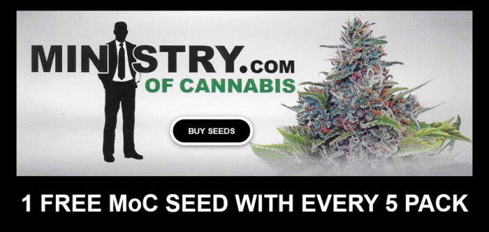 MoC Free Seeds Promotion | Discount Cannabis Seeds