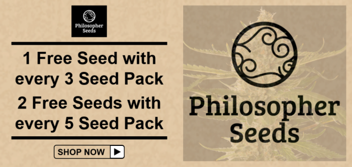 Free Philosopher Seeds - Discount Cannabis Seeds