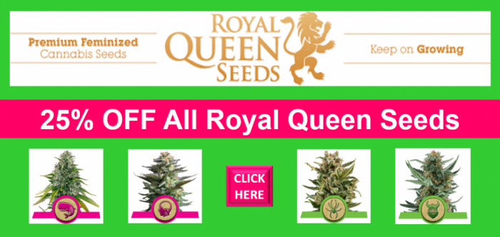 25% Off All Royal Queen Seeds | Discount Cannabis Seeds