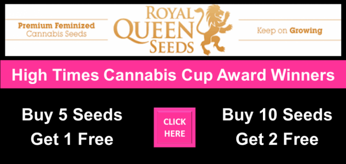 Royal Queen Seeds Free Seeds Promotions