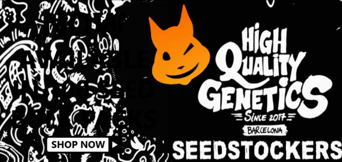 Seed Stockers Bulk Packs - Discount Cannabis Seeds