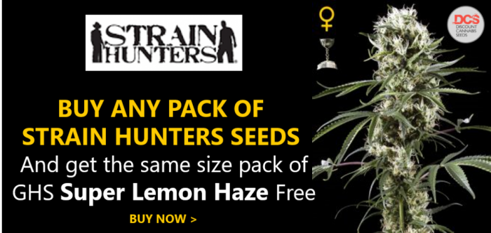 Strain Hunters Promotion | Discount Cannabis Seeds