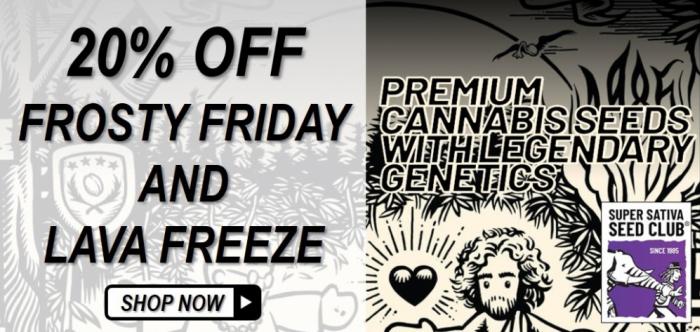 Super Sativa Seed Club - Discount Cannabis Seeds