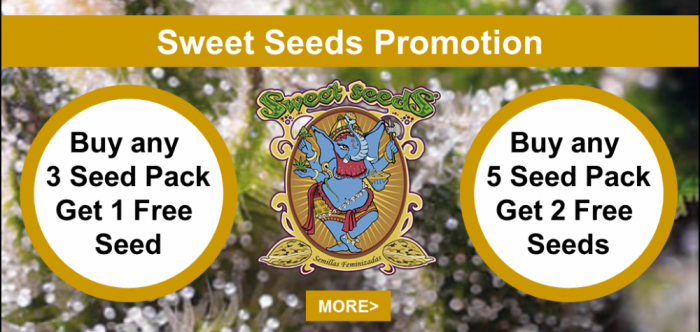 Sweet Seeds FREE Seeds Promotion | Discount Cannabis Seeds