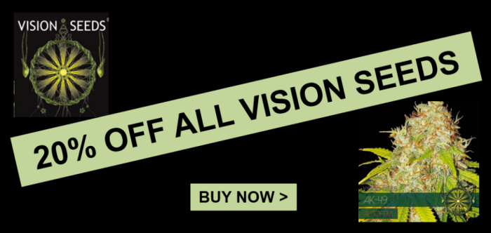20% Off Vision Seeds | Discount Cannabis Seeds