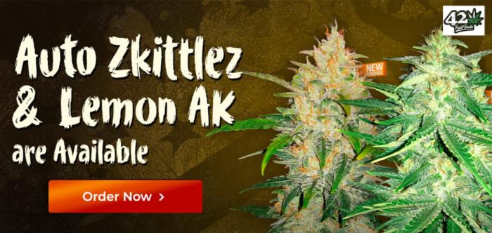Lemon AK-47 Auto and Zkittlez Auto | Fast Buds | Discount Cannabis Seeds