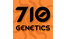 710 Genetices Seeds