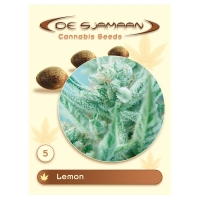 Lemon Regular Cannabis Seeds