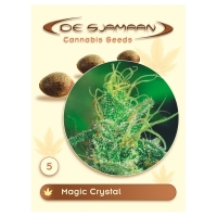 Magic Crystal Regular Cannabis Seeds