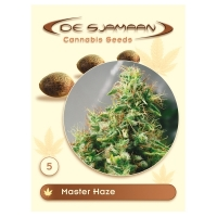 Master Haze Regular Cannabis Seeds