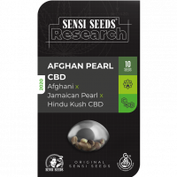 Afghan Pearl CBD Auto Feminised Cannabis Seeds - Sensi Seeds Research