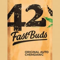 Auto Chemdawg Feminised Cannabis Seeds | Fast Buds Originals
