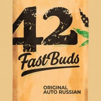 Auto Russian Feminised Cannabis Seeds | Fast Buds Originals