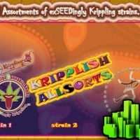 Dr Krippling Auto Mix A Cannabis Seeds