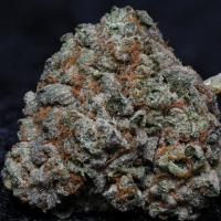 Fire OG Kush Feminised Cannabis Seeds | Big Head Seeds