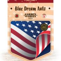 Blue Dream Auto Feminised Cannabis Seeds | Garden of Green