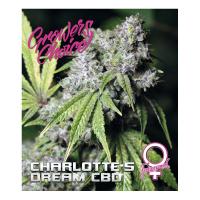 Charlottes Dream Feminised Cannabis Seeds - Growers Choice