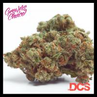 Gorilla Cookies Auto Feminised Cannabis Seeds - Growers Choice