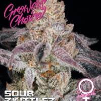 Sour Zkittlez Feminised Cannabis Seeds - Growers Choice
