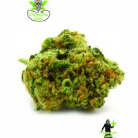Island MK Feminised Cannabis Seeds | Dispensario Seeds
