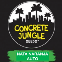 Nata Naranja Auto Feminised | Concrete Jungle Seeds