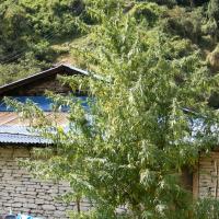 Nepal Annapurna Regular Cannabis Seeds | Ace Seeds