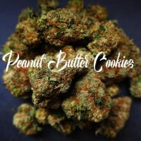 Peanut Butter Cookies Feminised - Tastebudz