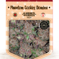 Phantom Cookies Domina Feminised Cannabis Seeds | Garden of Green
