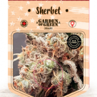 Sherbet Feminised Cannabis Seeds | Garden of Green