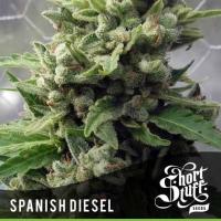 Auto Spanish Diesel Feminised Cannabis Seed   Shortstuff Seeds