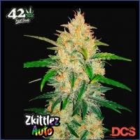 Zkittlez Auto Feminised Cannabis Seeds | Fast Buds